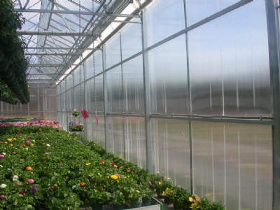 Nexus Greenhouse Systems Structured Sheet