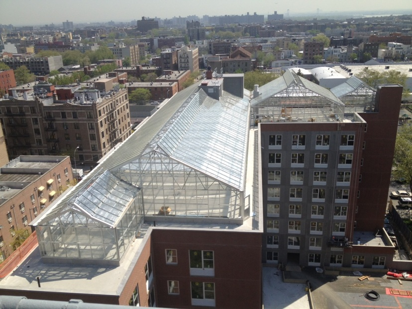 Nexus greenhouse systems markets roof top greenhouses for Cupola on house