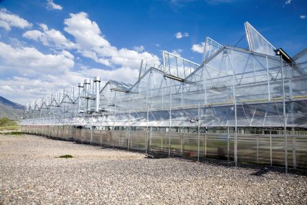 Nexus Greenhouse Systems Markets Commercial Growers