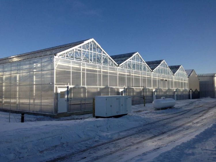 Nexus Greenhouse Systems Projects Backyard Farms