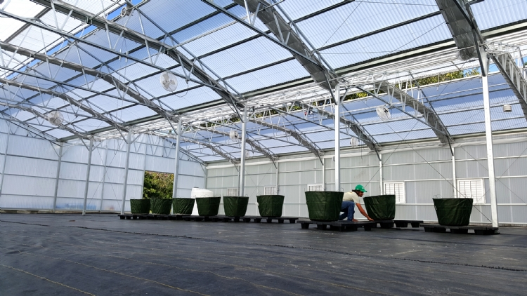 Nexus Greenhouse Systems Projects Mars Global