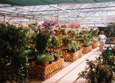 Fort Collins Nursery Ft Co