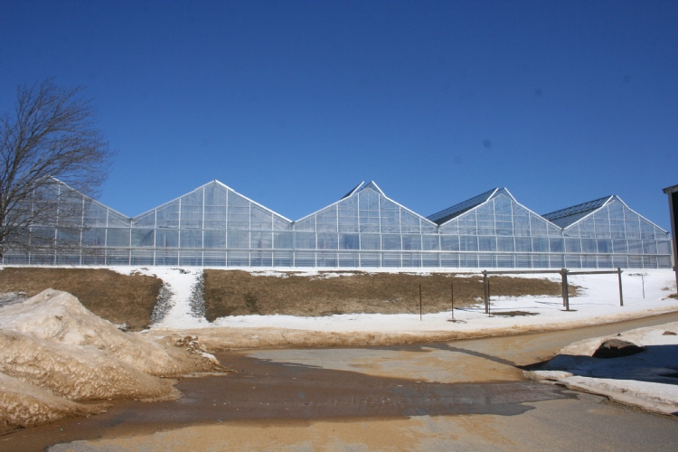 Nexus Greenhouse Systems Projects Pleasantview