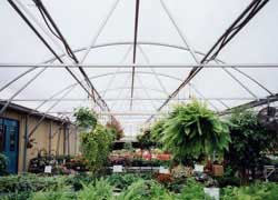 Nexus Greenhouse Systems :: Projects :: Harwell's GreenThumb