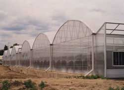 Nexus greenhouse systems projects welby gardens for Welby gardens